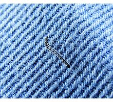 Guess the bug and fabric! Photographic Print