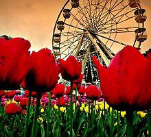 Spring Floriade by Rinaldo Di Battista