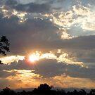 Riley Sunrise by Jennie L. Richards