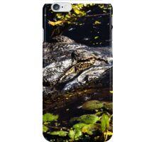 Sleeping Alligator iPhone Case/Skin