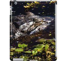 Sleeping Alligator iPad Case/Skin