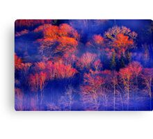 Forest of Fire Canvas Print