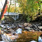 Makato, MN: Mineopa State Park in the Fall by ACImaging