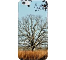 Bearing the Weight of Sky and Clouds.... iPhone Case/Skin