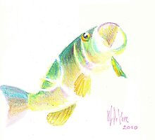 Big Mouth Bass by KipDeVore