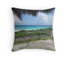 Punta Sur Throw Pillow