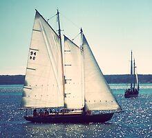 Ship Ahoy by Fanboy30