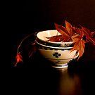 autumnal light  by anisja