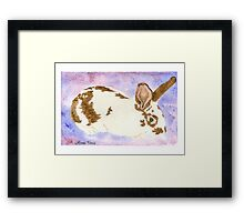 Daily Doodle 24- Rescue - American Rabbit, Robin Framed Print