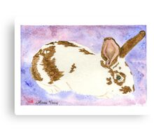 Daily Doodle 24- Rescue - American Rabbit, Robin Canvas Print