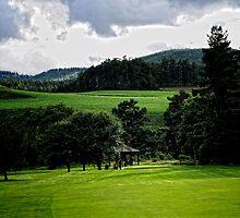 Along the Green.    Ballater golf course Scotland by Karen  Betts