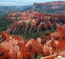 Incredible Bryce Canyon by saxonfenken