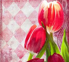 Hot pink and cream tulips, vintage writing, Harlequin print by Glimmersmith