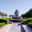 Pineapple Fountain in Charleston by Susanne Van Hulst