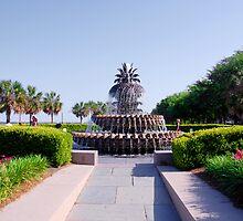 Pineapple Fountain in Charleston by Susanne Van Hulst