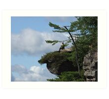 Perfectly Perched Art Print