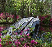 Bridge in Magnolia Plantations Garden by Susanne Van Hulst