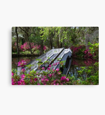 Bridge in Magnolia Plantations Garden Canvas Print