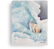 Life In The Arctic Circle Canvas Print