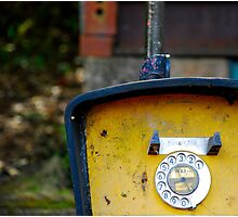 Yellow Telephone Photographic Print