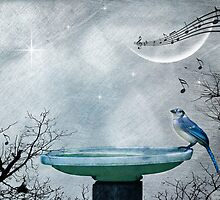 Music of the Night by Barbara Simmons