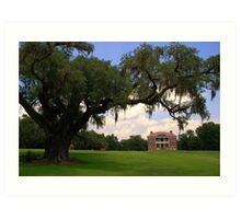Drayton Hall Plantation, Charleston Art Print