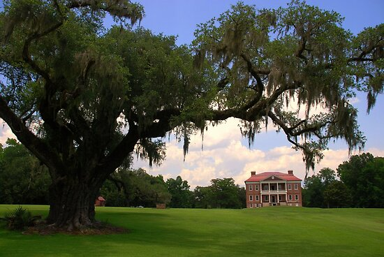 Drayton Hall Plantation, Charleston by Susanne Van Hulst