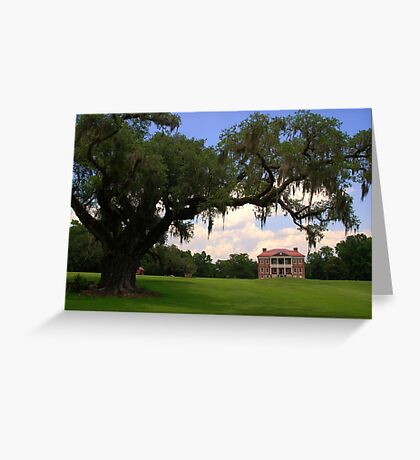 Drayton Hall Plantation, Charleston Greeting Card