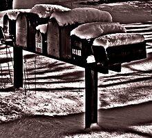 Winter Shadows by Merlina Capalini