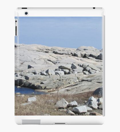 Peggy's Cove, Nova Scotia iPad Case/Skin