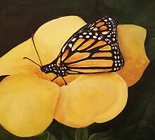 Butterfly by Andrew G Campbell
