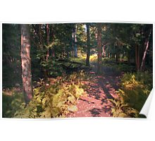 The Wooded Trail Poster