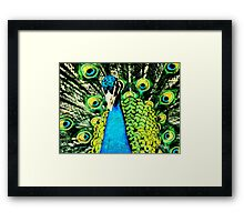 Pen & Ink....Peacock.... Framed Print