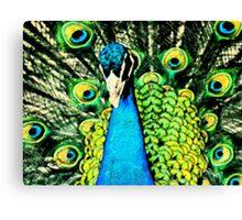 Pen & Ink....Peacock.... Canvas Print