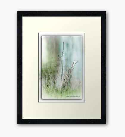 Water Side Peace © Vicki Ferrari Photography Framed Print