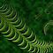 AVATAR FOR JANUARY 2014 - Ferns And Mosses Around The World