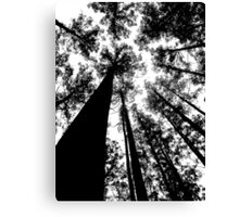 Natures Giants Canvas Print