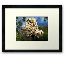 Knit me a flower coat Framed Print