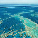 The Great Barrier Reef © Vicki Ferrari by Vicki Ferrari
