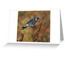 The Tree Hopper Greeting Card