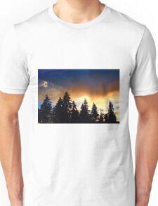 Northwest Light Unisex T-Shirt
