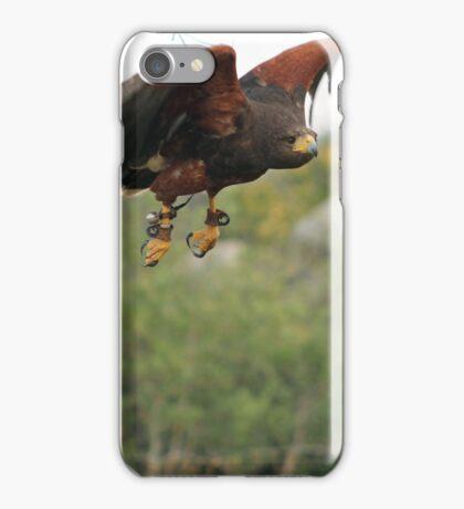 Harris Hawk 2 iPhone Case/Skin