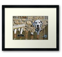 Be aware of the Dalmation Framed Print