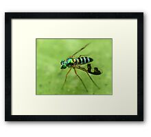 Reflections of a Photographer 1 Framed Print