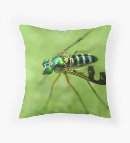 Reflections of a Photographer 1 Throw Pillow