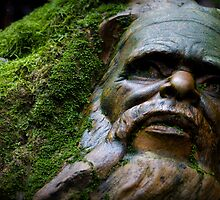 William Ricketts - Face in a Rock by Daniel Berends