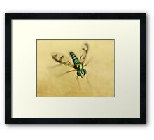 Reflections of a Photographer 2 Framed Print