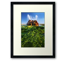 Green Fly Geyser Framed Print