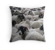 Flocking Together Throw Pillow