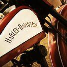 Harley Dreamin' by thinkingoutloud